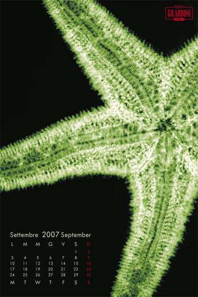 2007f10