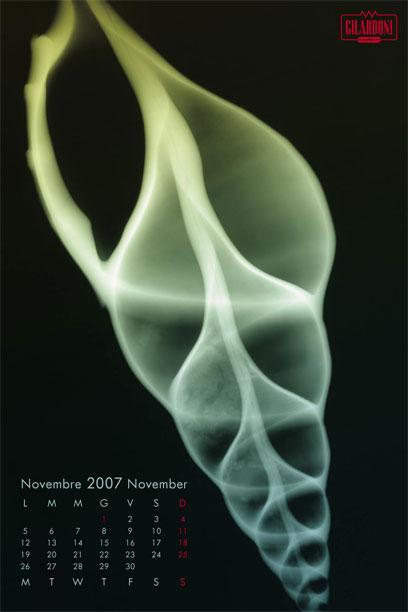 2007f12