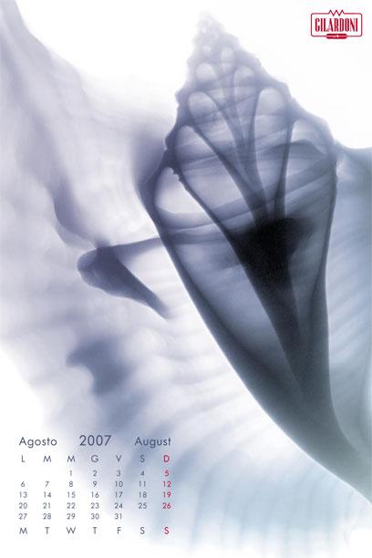 2007f9
